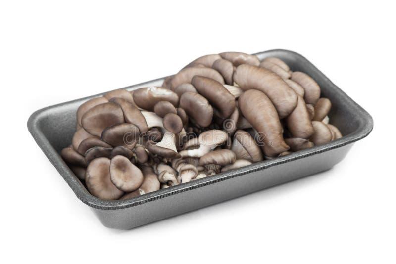 堆在包裹的新鲜的未加工的蚝蘑 库存图片