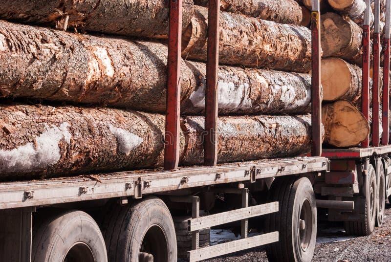 堆在无盖货车的大树干 免版税库存图片