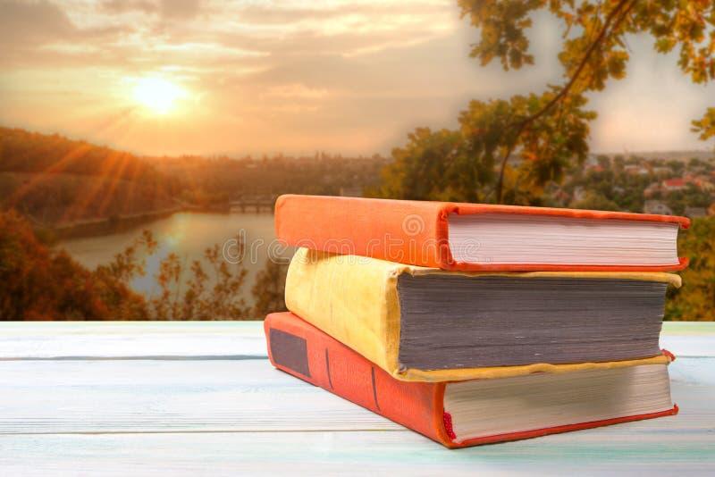 堆在木桌上的五颜六色的书在自然 库存图片
