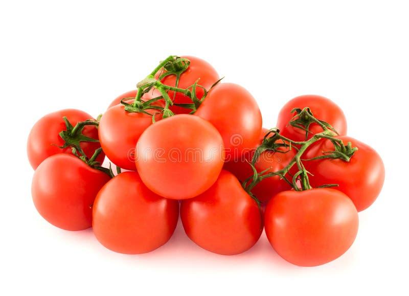 堆在白色背景的红色蕃茄束 免版税库存图片