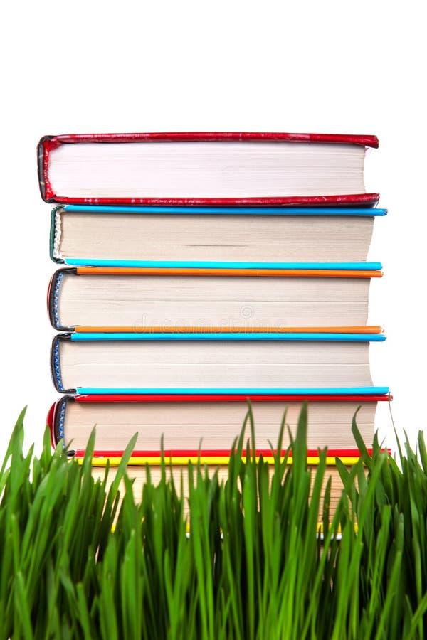 堆在草的书 免版税库存图片