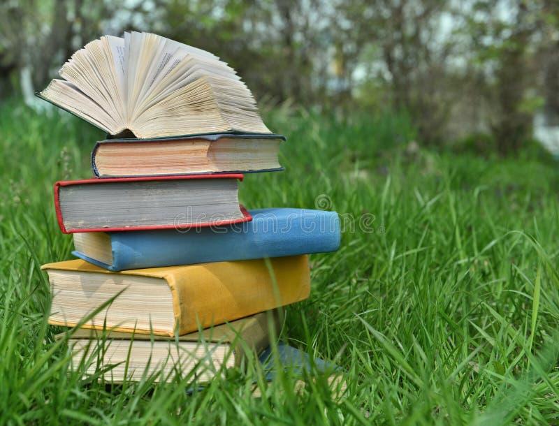 堆在草的书 免版税库存照片