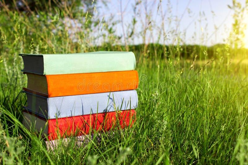 堆在绿草的多彩多姿的书在草甸围拢的美好的自然背景晴天 库存照片