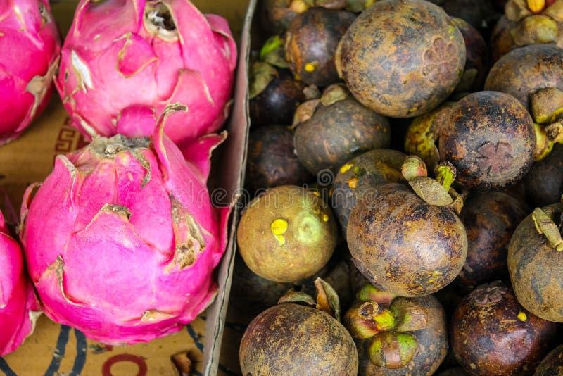 堆山竹果树和Dragonfruit 库存图片