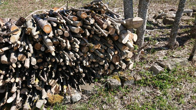 堆干燥被切开的木头在国家 免版税库存照片