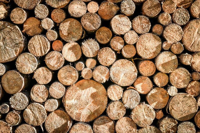 堆或堆自然火木头采伐纹理背景 免版税库存图片