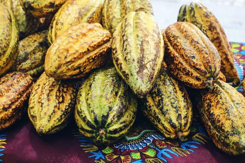 堆新鲜的可可粉荚,可可属恶特写镜头  街道热带水果市场 异乎寻常的食物概念收获  库存图片