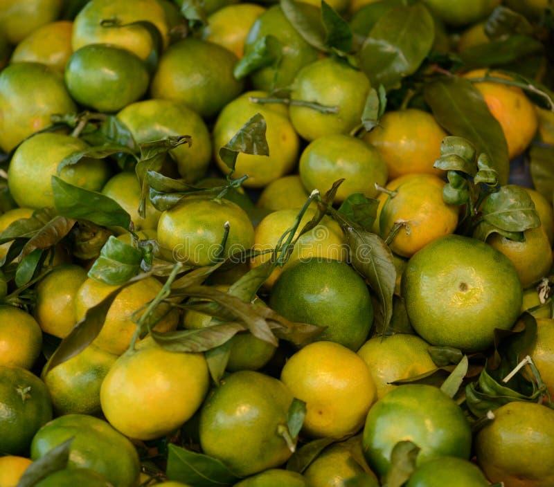堆新鲜的普通话果子 图库摄影