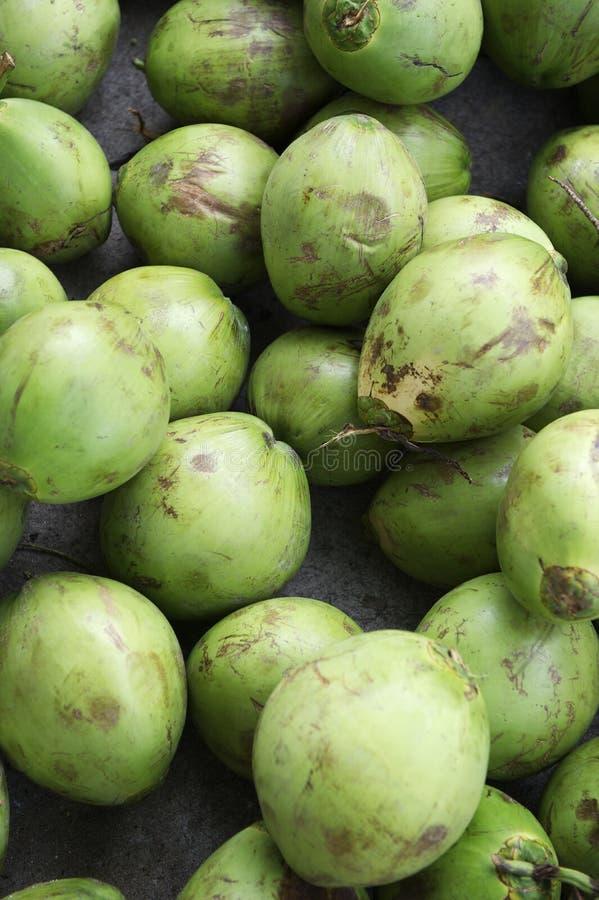 堆新鲜的绿色椰子 库存图片