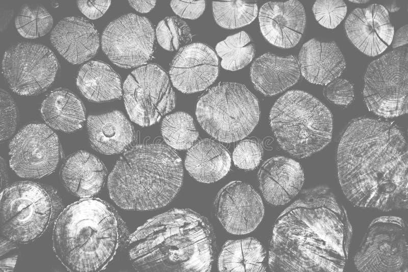 堆木头采伐产业的存贮 免版税库存图片