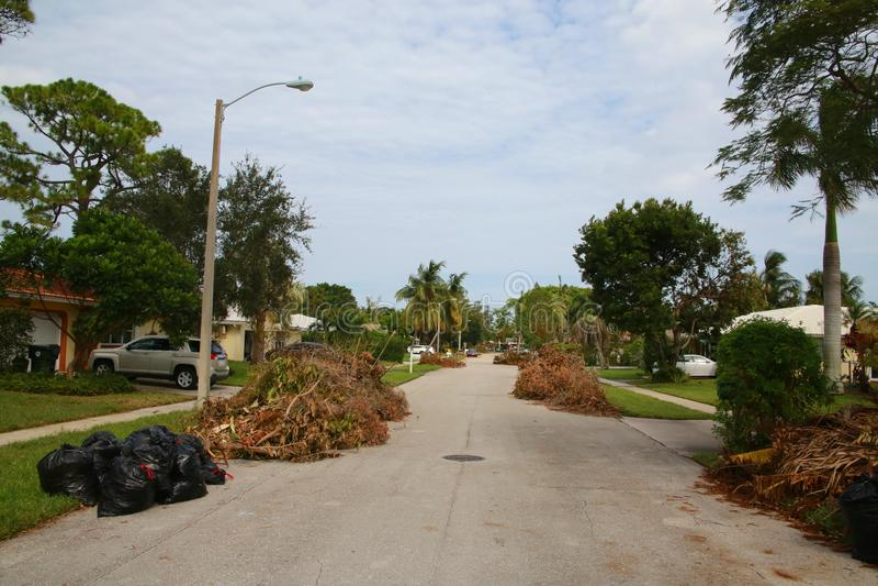 堆树枝飓风厄马 图库摄影