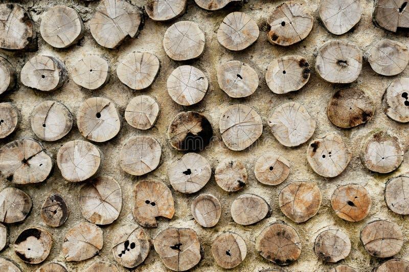 堆桦树木柴 免版税图库摄影