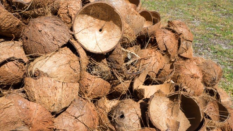 堆椰子壳 库存图片