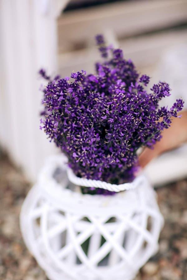 堆淡紫色在一条木老长凳的花花束在夏天庭院里 r 免版税库存照片