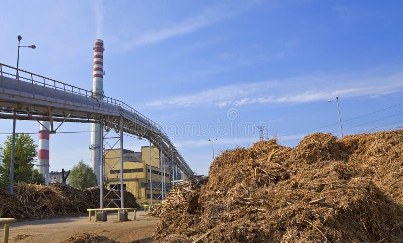 木头和生物量植物 免版税图库摄影