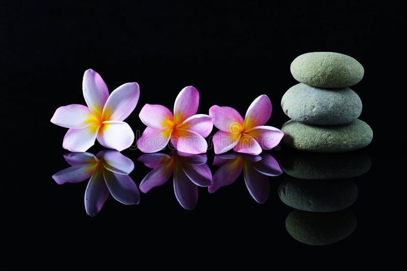 堆积禅宗石头和赤素馨花花 免版税库存照片