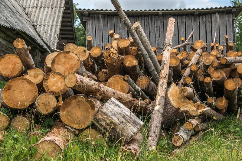 堆老树被锯的树干在一个老佝偻病谷仓的背景的家庭用途特写镜头的 库存照片