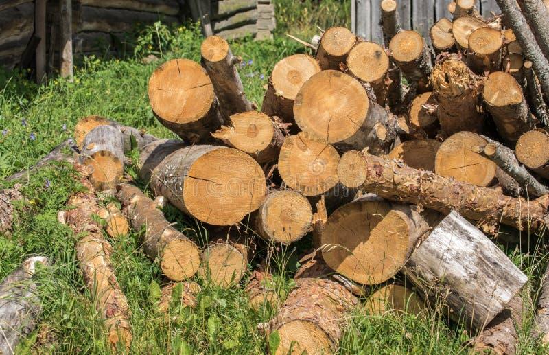 堆老树被锯的树干在草的家庭用途特写镜头的 免版税库存图片