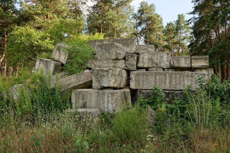 堆老混凝土板本质上在森林里 库存图片