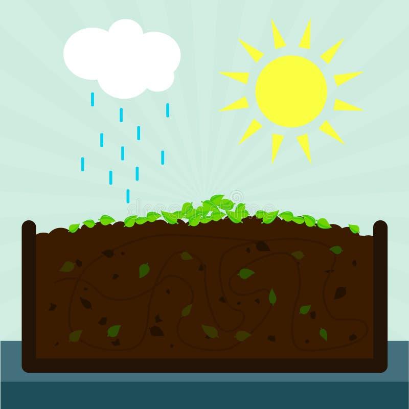 堆肥 免版税库存照片