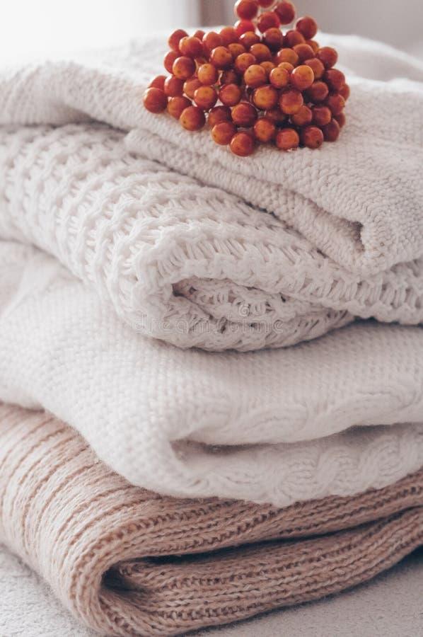 堆舒适被编织的毛线衣在温暖的背景和有荚莲属的植物和干燥标本集的 秋天冬天概念 免版税图库摄影