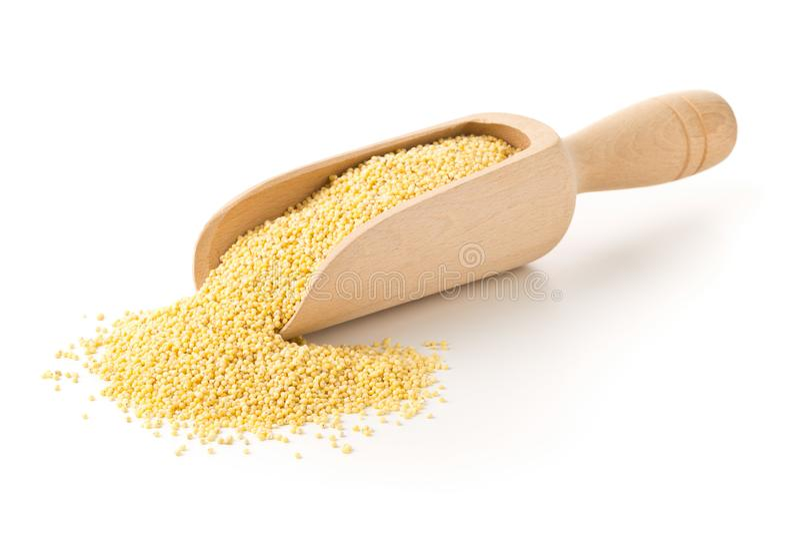 堆金黄小米,面筋自由五谷种子,在白色的木瓢 免版税库存图片