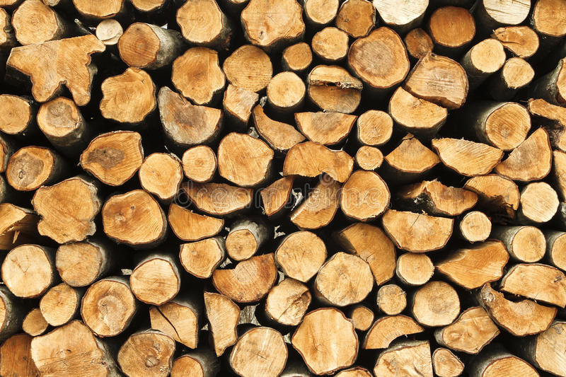 堆cuted木树桩,早午餐纹理 库存图片