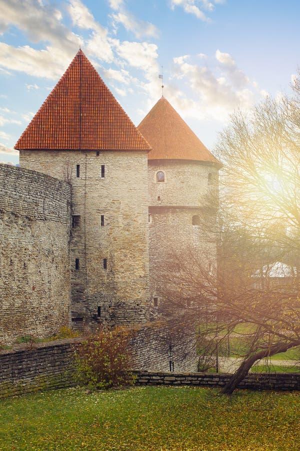堡垒墙壁和塔在老镇塔林,爱沙尼亚 免版税库存图片