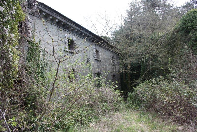 堡垒Bastione,19世纪军事堡垒,被放弃对自然忽视  困厄的石建筑里面 库存图片