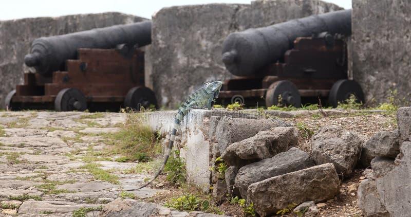堡垒Beekenburg 免版税库存照片