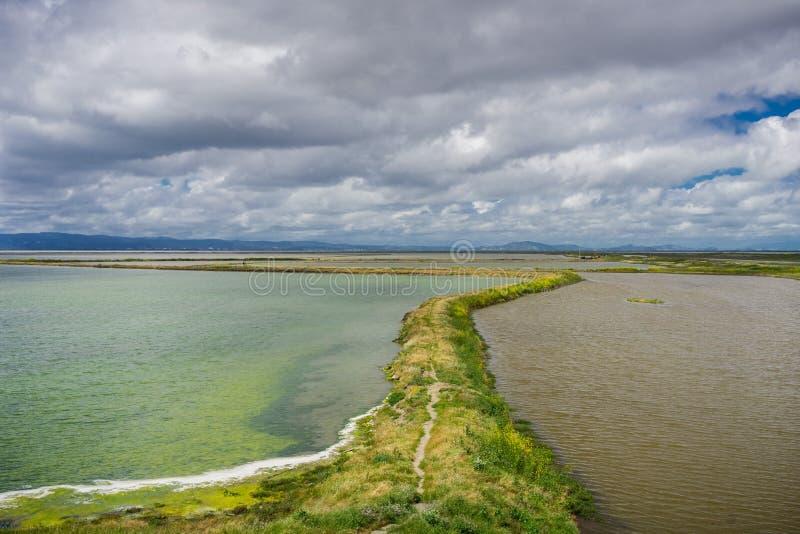 堤坝在旧金山湾,土狼小山地方公园,加利福尼亚 免版税库存照片