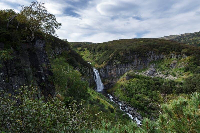 堪察加半岛风景:山瀑布、高山植被-绿色灌木和树小瀑布  库存图片
