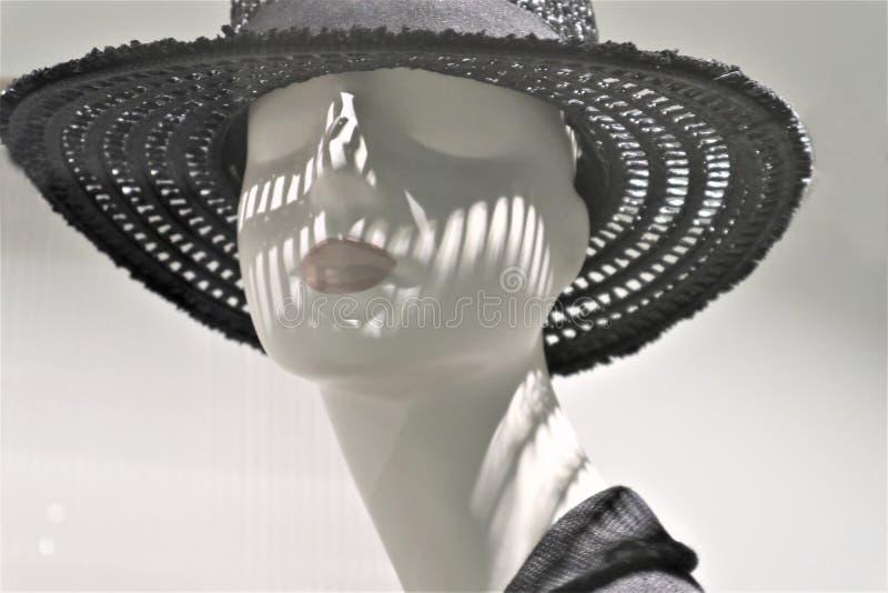塑料时装模特头的特写镜头 免版税库存照片