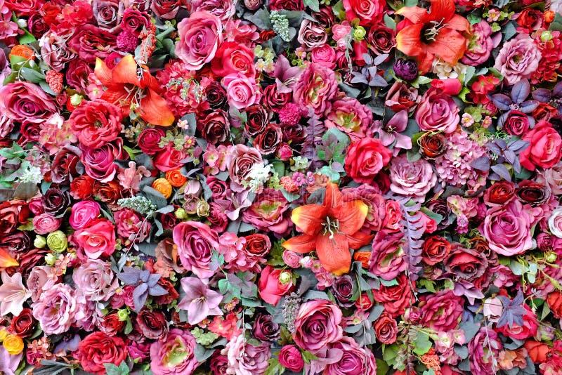 塑料罗斯和约翰・利利花的美好的颜色用不同的花的花束 装饰五颜六色的花卉墙壁背景 库存图片