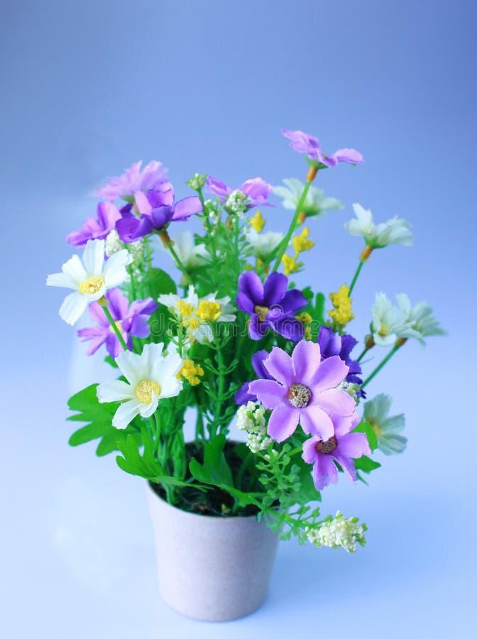 塑料花瓶 库存图片
