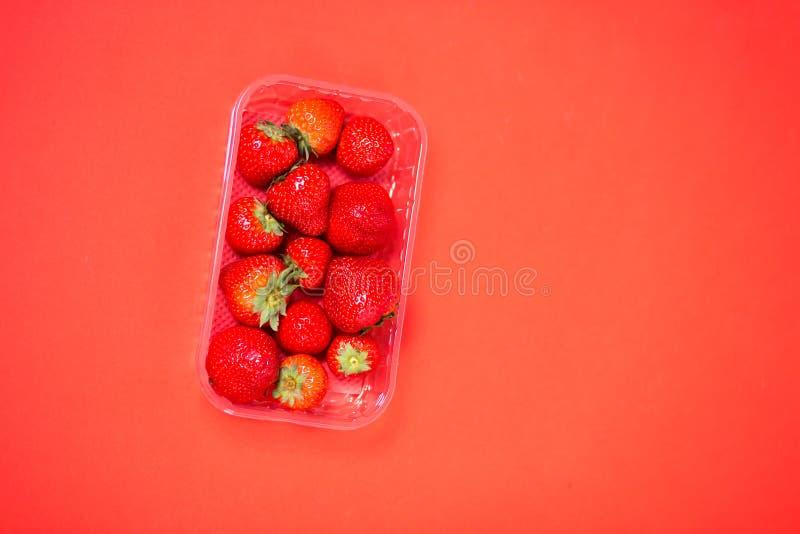 塑胶容器用在红色背景隔绝的成熟草莓 免版税库存图片