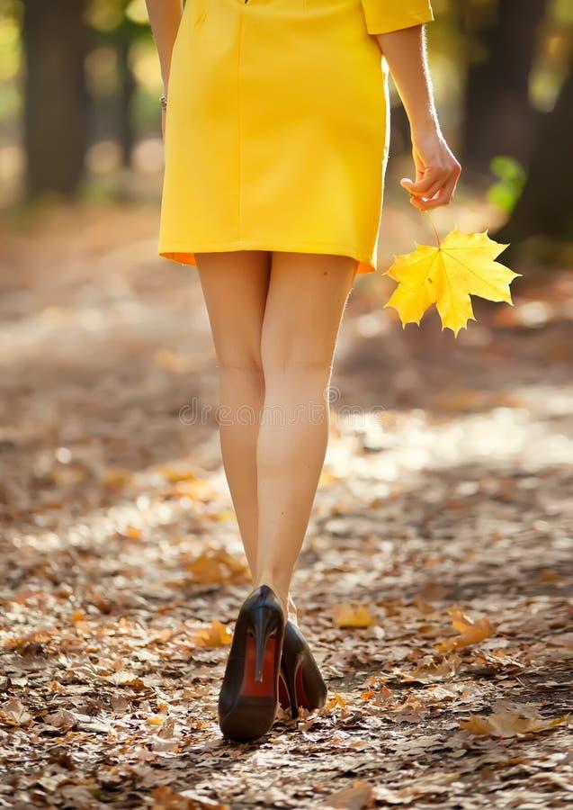 塑造完善的长的亭亭玉立的妇女腿的图象在秋天路的 免版税库存照片