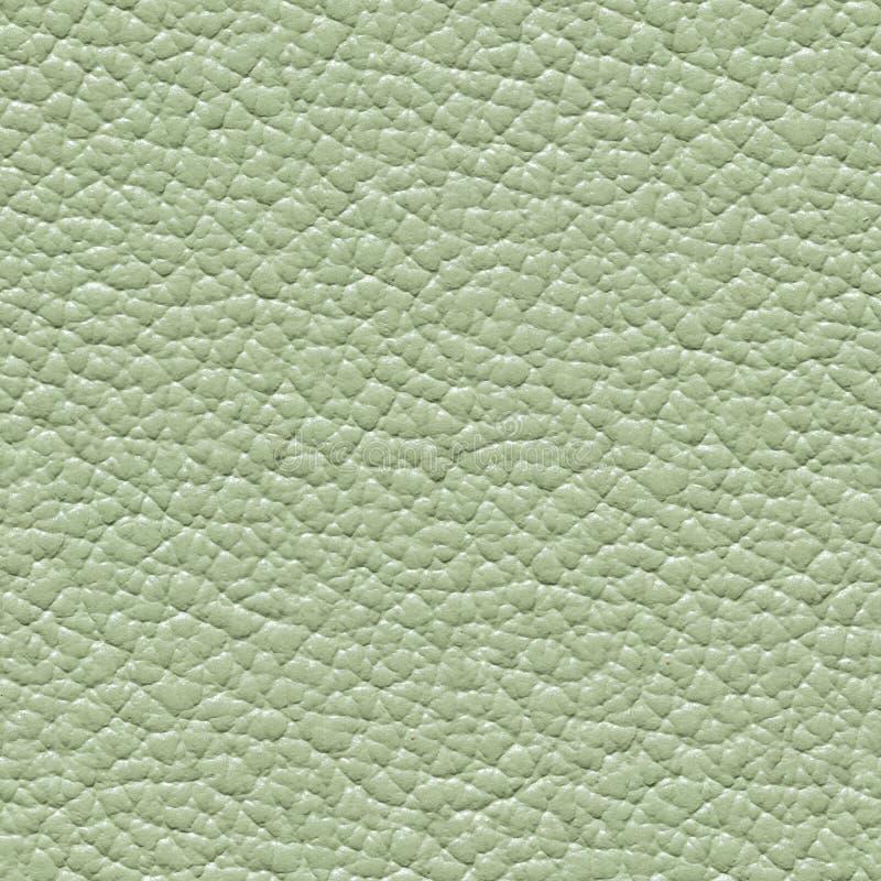 塑造浅绿色的皮革背景 无缝的方形纹理 库存图片