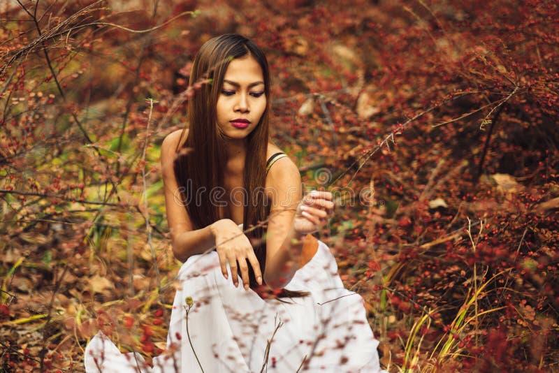 塑造美丽的白色礼服的华美的少妇在童话森林魔术大气 免版税库存照片