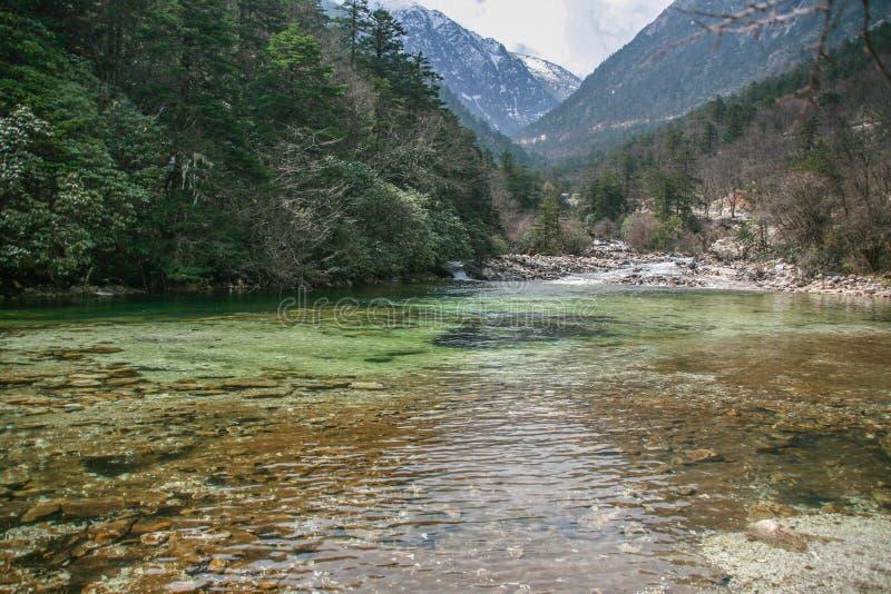 塔公乡草原这高原风景在四川,中国 库存照片