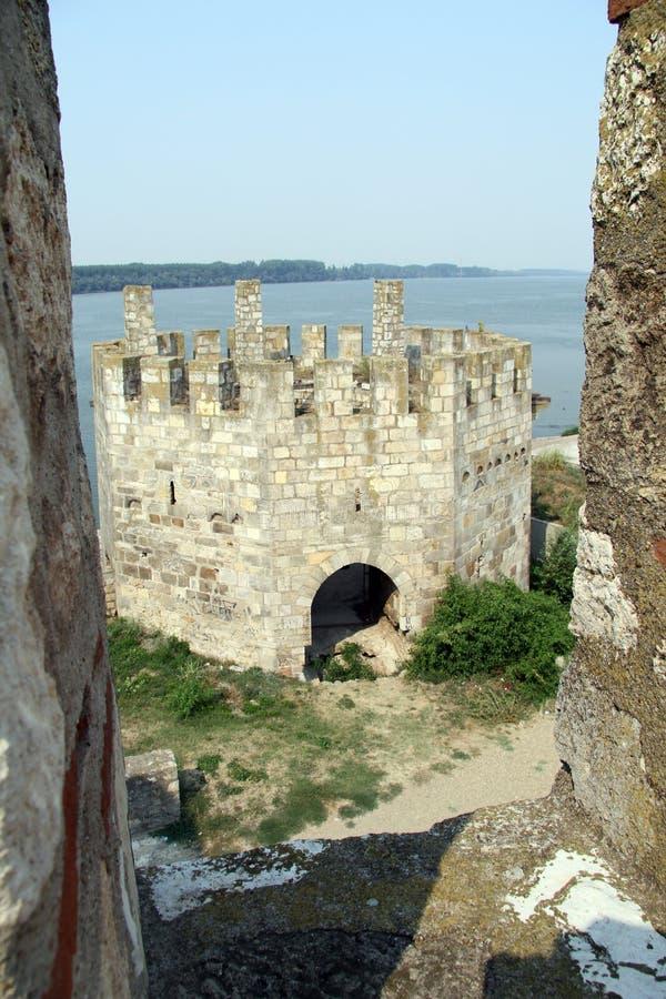 塔和河 库存图片