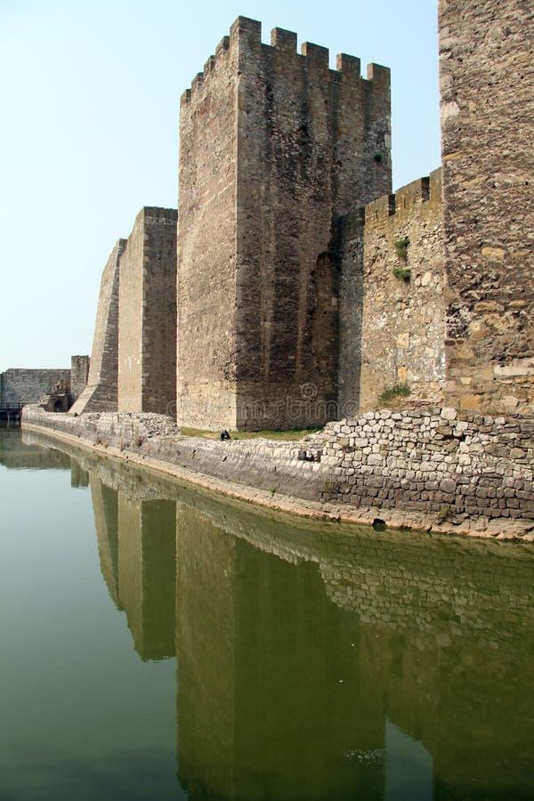 塔和绿色水 库存图片