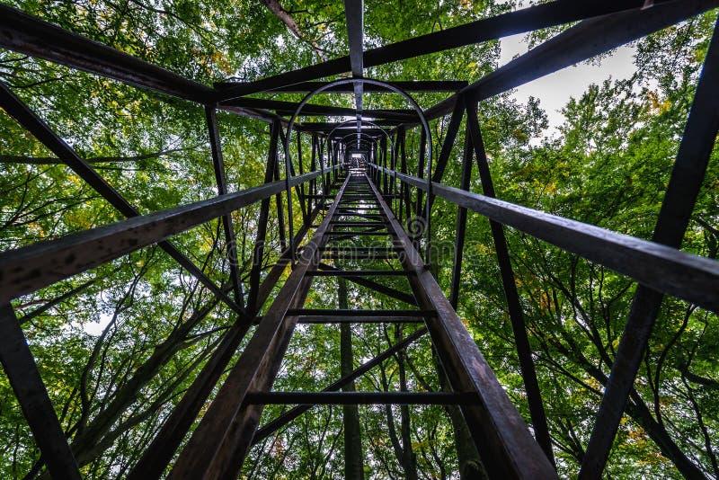塔在森林里 免版税库存照片