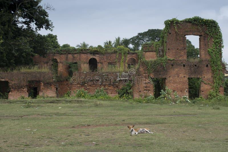 塔姆卢克,Midnapur,西孟加拉邦/印度- 2017年11月18日:好朋友朝代的废墟在孟加拉 库存图片
