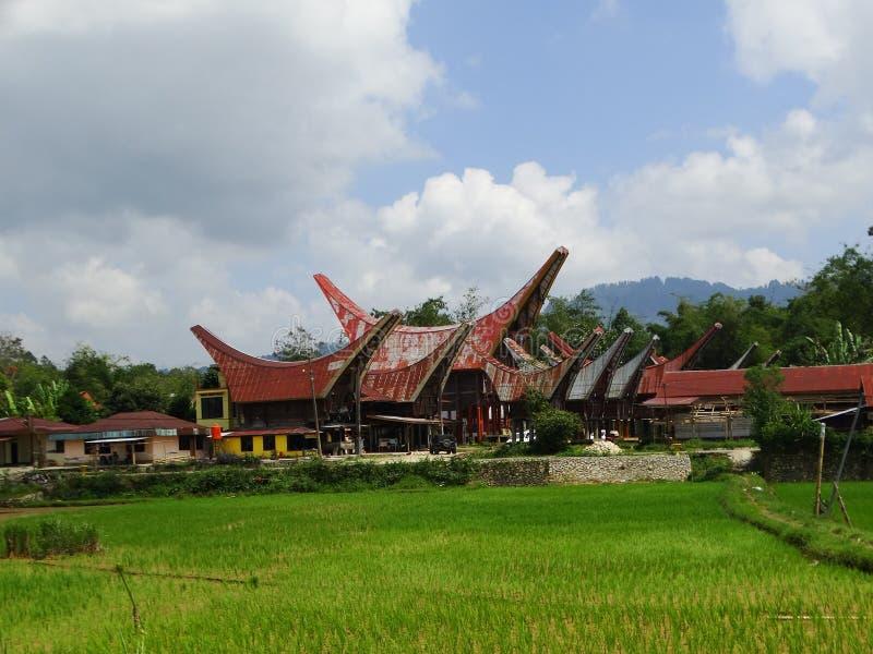塔娜Toraja村庄、tongkonan房子和大厦 Kete Kesu, Rantepao,苏拉威西岛,印度尼西亚 免版税库存照片
