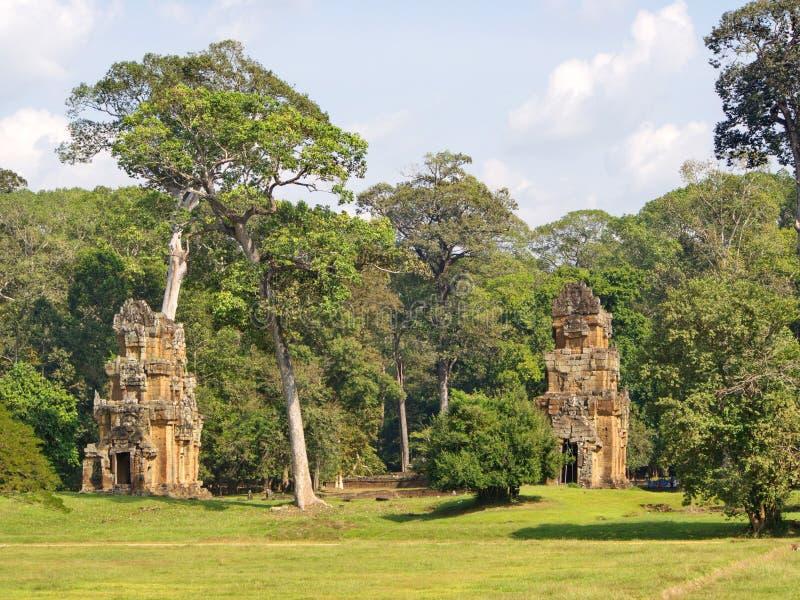 塔布茏寺寺庙废墟长满与树在缝的吴哥窟在2012年柬埔寨,12月9日收割城市, 库存图片