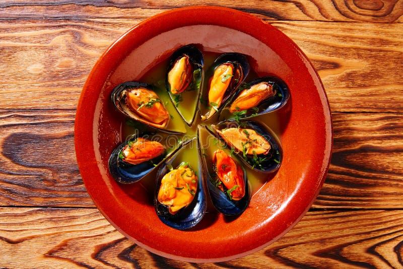 塔帕纤维布mejillones Al蒸气蒸的淡菜西班牙 库存照片