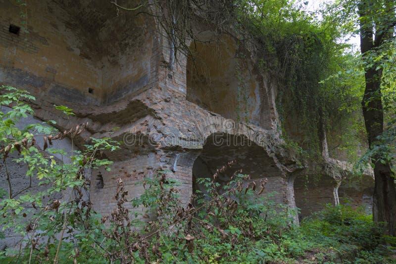 塔拉卡诺夫斯基堡,杜布诺塔拉卡尼夫森林遗址 乌克兰 库存图片