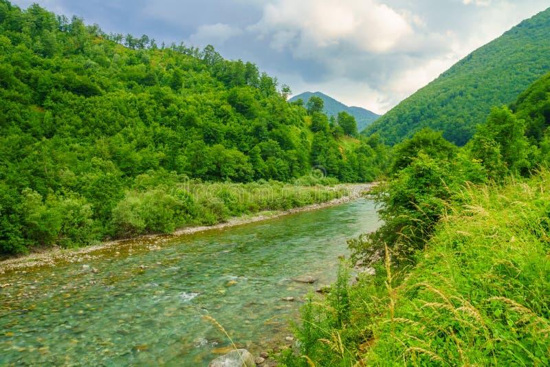 塔拉在莫伊科瓦茨附近的河风景 免版税库存图片