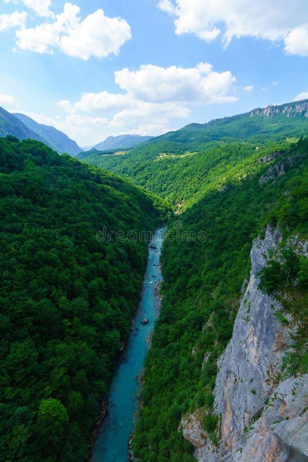 塔拉河和峡谷 库存图片